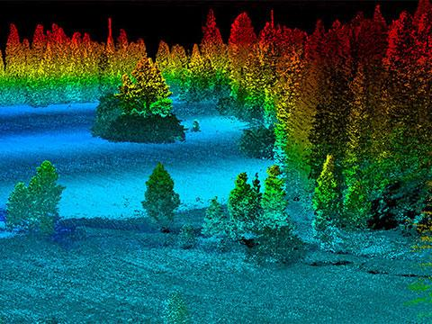 Lidar imagery of trees captured from UAV